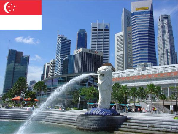 Gửi vận chuyển hàng đi Singapore bằng đường biển hàng không uy tín chất lượng nhất trên thị trường hiện nay